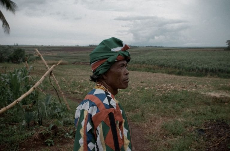 living wage and income for pineapple pickers